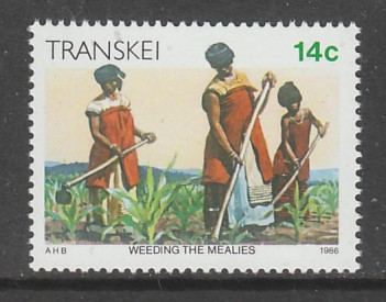 TIMBRE NEUF DU TRANSKEI - LA VIE AU TRANSKEI : SARCLAGE DES PLANTATIONS N° Y&T 184