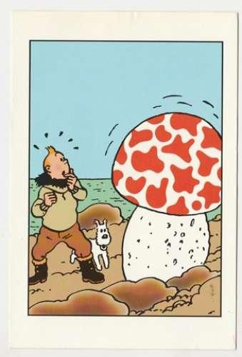 cpm  Hergé  Tintin  l'Etoile Mystérieuse