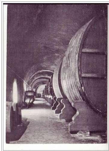 Cpsm 51 Epernay , Moët & Chandon  galerie des vins de réserve ,non écrite