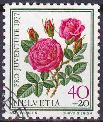 SUISSE 1977 OBLITERE N° 1043 Fleurs