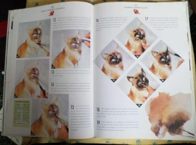 peindre et dessiner facile...animaux à l'aquarelle... année 1995... édition BORDAS