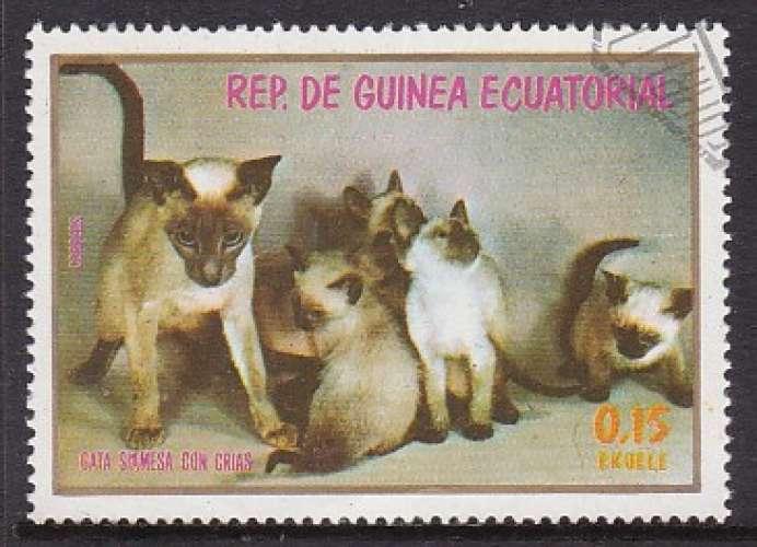TIMBRE OBLITERE DE GUINEE EQUATORIALE -  CHATONS SIAMOIS