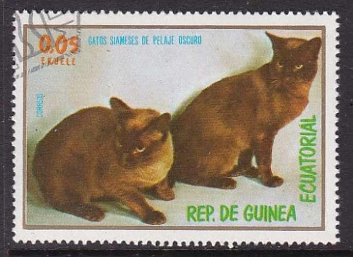 TIMBRE OBLITERE DE GUINEE EQUATORIALE -  CHATS SIAMOIS A PELAGE SOMBRE