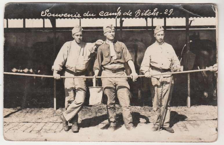 Carte-photo  57 Souvenir du Camp de Bitche 1929 ( 3 Palfreniers )