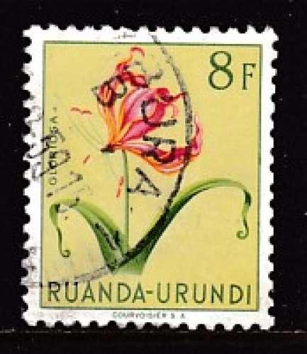 TIMBRE OBLITERE DU RUANDA-URUNDI - FLEURS : GLORIOSA N° Y&T 193