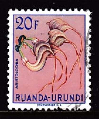 TIMBRE OBLITERE DU RUANDA-URUNDI - FLEURS : ARISTOLOCHIA N° Y&T 195