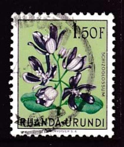 TIMBRE OBLITERE DU RUANDA-URUNDI - FLEURS : SCHIZOGLOSSUM  N° Y&T 187