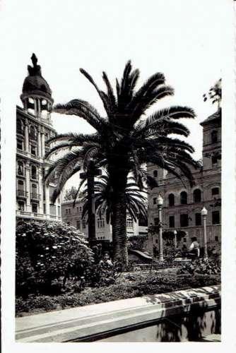 CPSM  MURCIA : Jardin de St Dominique