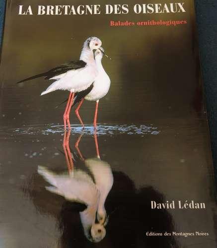 France 2002 la Bretagne des oiseaux balades ornithologiques David Lédan Edit Montagnes Noires