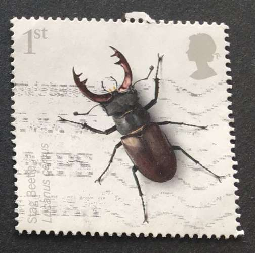 GB 2008 INSECTS 1st Stag Beetle  YT 3013