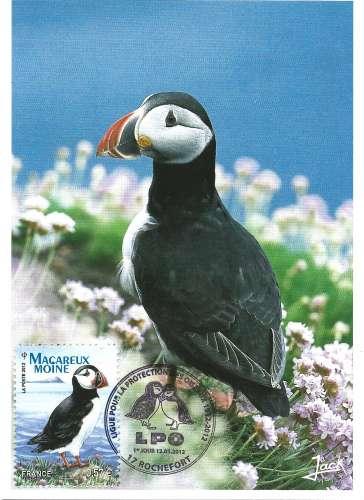 France 2012 - Carte maximum : Y & T 4659 - Macareux