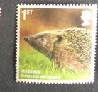 GB 2010 Mammals Hedgehog
