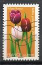 miniature France Oblitéré Adhésif Yvert N°662 Fleurs 2012 Tulipe