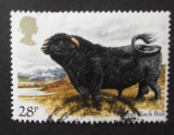 GB 1984 Cattle  28p YT 1120 / SG 1243