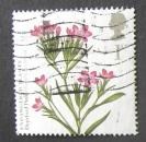 GB 2009 Plants Deptford Pink