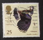 GB 1996 The Wildfowl & Wetlands Trust  25p YT 1862 / SG 1916