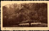 miniature CARTE POSTALE BELGIQUE - Chemin de fer de la Grotte de Han. Bergermoutons - Les Rochers de Faule