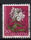 Suisse - 1960 -  n°670 (YT) Pour la jeunesse : flore , phlox      (O)