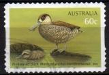 Australie - 2012 - n°3573 (YT) Faune : oiseaux aquatiques (O)