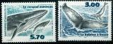 miniature Saint Pierre et Miquelon 707 708 2000  cétacés baleine neuf ** TB MNH SIN charnela