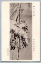 miniature Carte Postale photo à identifier - bambou ? Japon ?