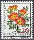 Suisse 1977 oblitéré n° 1042 fleurs