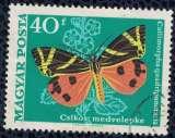 miniature Hongrie 1969 Oblitéré Used Papillon Callimorpha quadripunctaria Écaille chinée SU