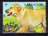 miniature France 4545  faune chien 2011 neuf ** luxe MNH sin charnela prix de la poste 0.58