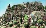 miniature CPSM EZE : Le Jardin exotique - Photo véritable