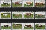 miniature Les vaches de nos régions