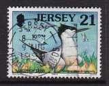 miniature TIMBRE OBLITERE DE JERSEY - STERNA SANDVICENSIS (STERNE CAUGEK) N° Y&T 808