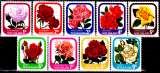 miniature Nouvelle Zélande 645 / 53 Roses