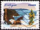 miniature France - 2009 - Y&T n° AA 297 - Obl. - L'Ajonc - Flore des régions - Bretagne
