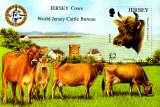 miniature Jersey 2008 Vaches