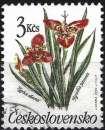 miniature Tchécoslovaquie 1990 - Fleurs ( Mi 3040 - YT 2841 )