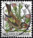 miniature Belgique 1985 - Oiseau : Chardonneret ( Mi 2242 - YT 2187 )