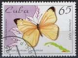 miniature Faune insectes - Papillons - Melete salacia cubana