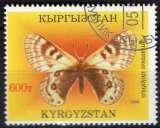 miniature Faune insectes - Papillons - Parnassius delphius