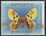 miniature Faune insectes - Papillons - Parnassius tianschanicus