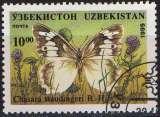 miniature Faune insectes - Papillons - Chasara staudingeri B.H