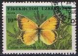 miniature Faune insectes - Papillons -  Colias romanovi Gr.Gr