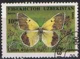 miniature Faune insectes - Papillons -  Colias wiskotti Stgr