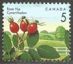 miniature Canada - 1992 - Y&T n° 1265 - Obli. - Cynorrhodon - Baies sauvages - Série courante