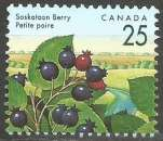 miniature Canada - 1992 - Y&T n° 1268 - Obli. - Petite poire - Baies sauvages - Série courante