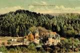 miniature CPA  FORBACH : Le Burghof