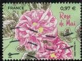 miniature France 2020 Oblitéré Used Fleurs de Grasse et de Méditerranée Rose de Mai Y&T 5400 SU