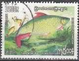 miniature Cambodge 2011 Poisson Hampala macrolepidota O Cachet rond